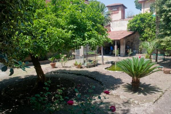 giardino-10