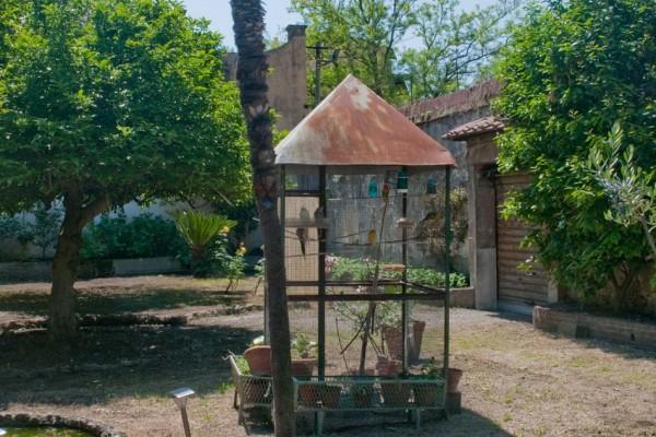 giardino-20